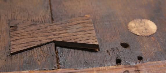 Portrait of a widow butterfly key