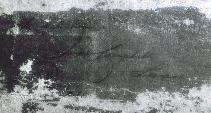 Signature-700